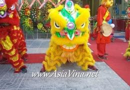 Khai trương Anh Văn Hội Việt - Úc